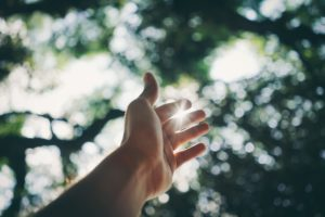Drug Rehab Professional Help, hand reaching out to the sunny tree lined sky, Foundations Wellness Center