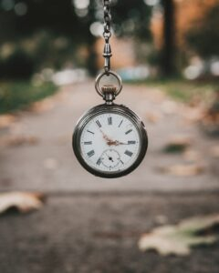 Pocket watch with blurred outdoor background, whippits long term effects