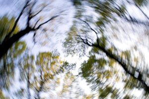 blurry photo of trees, dizziness, side effects